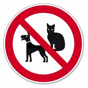 Read more about the article Animali domestici: cosa fare in caso di divieti del condominio